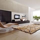 Woonkamer design fauteuil karpet